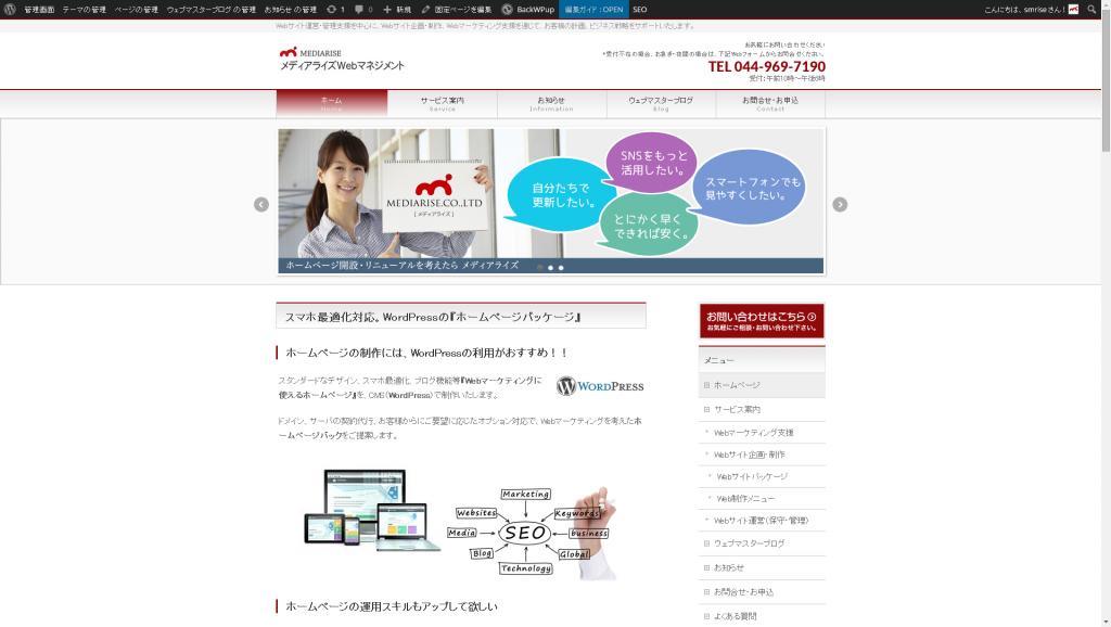 Webマネージメントサービス